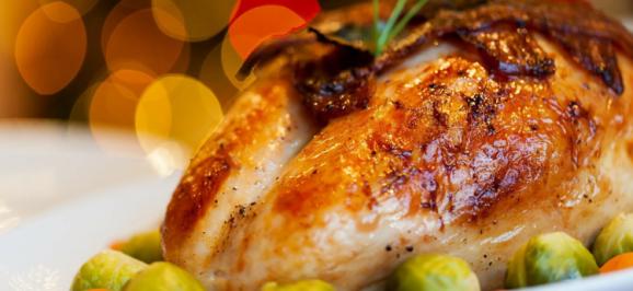 Thanksgiving Turkey - Close Up
