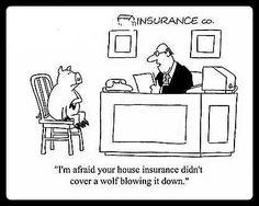 2ba20ffafed5604f05694eb7801182a8--insurance-humor-insurance-agency